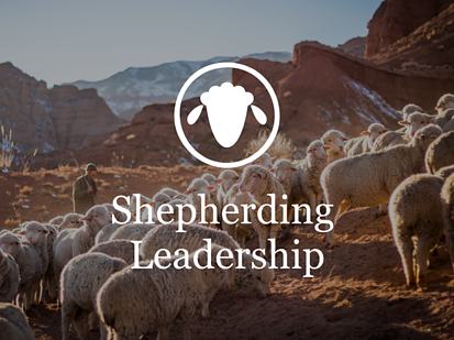 Shepherding Leadership